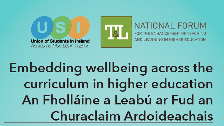 'Supporting Wellbeing in Practice' webinar and report